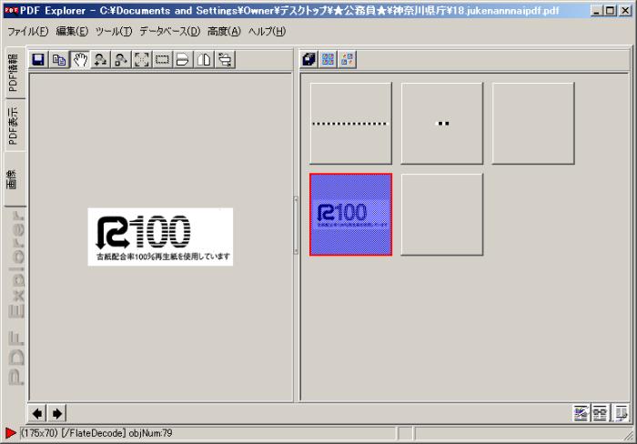 displaying pdf screen in explorer
