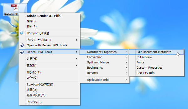 「Debenu PDF Tools」⇒「Document Properties」⇒「Edit Document Metadata」
